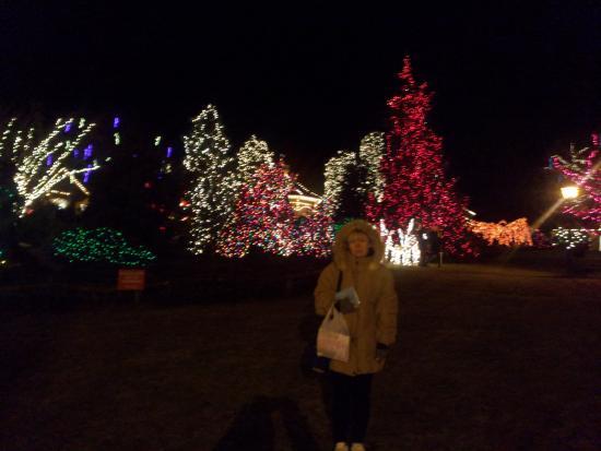 golden plough inn at peddlers village christmas lights