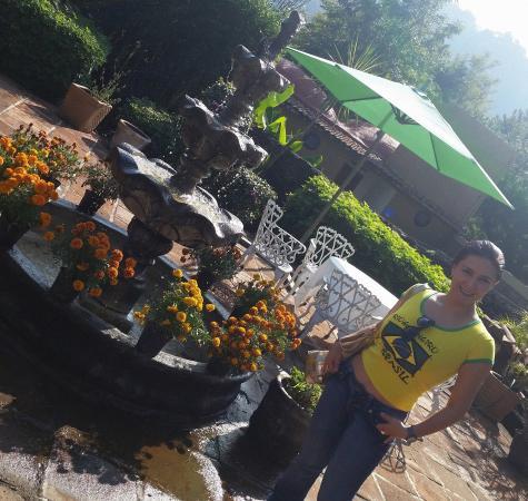 Hotel Amatlan de Quetzalcoatl : Diviertete con la variedad de colores , sus jardines muy cuidados