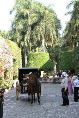 Hacienda San Gabriel de las Palmas : Fuente