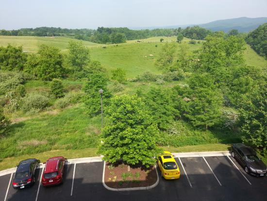 Holiday Inn Express & Suites Blacksburg - University Area: Otra vista desde la habitación