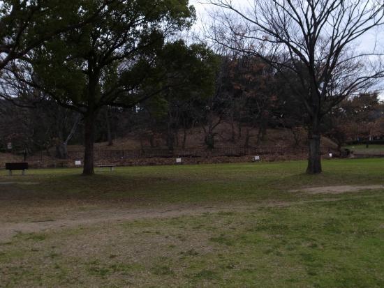 Daisen Park : 古墳が点在しています