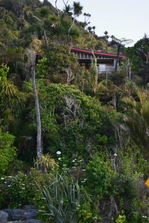 Hydrangea Cottages : Secluded Miro Cottage