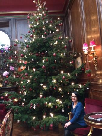 Christmas decorations picture of hotel sacher wien for Best hotel in vienna for christmas