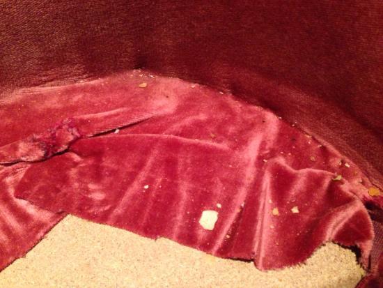 Ashley House Hotel : Crisps and food underneath the cushion on the chair!
