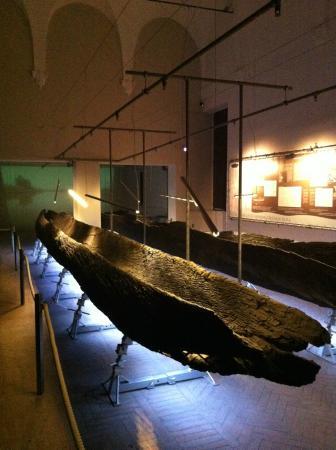 Museo Archeologico Nazionale: Sala delle barche ritrovate, a piano terreno del Museo Archeologico di Ferrara