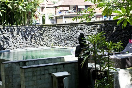 Indigo Villas: Pool