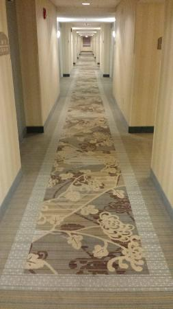 Holiday Inn Hotel & Suites Beckley: Hall