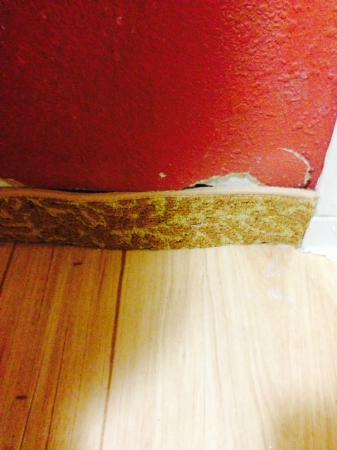 Knights Inn Palm Harbor: Carpet around the floorboards to hide damage