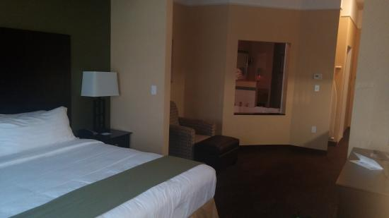 Holiday Inn Express Hotel & Suites Lansing-Dimondale: Jacuzzi room