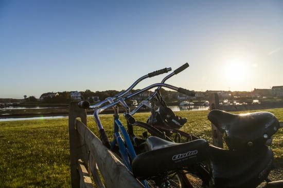 Green Harbor Resort: Bikes available at the resort