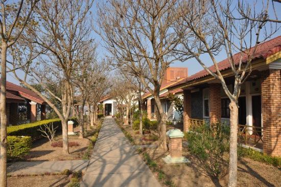 Vansana Plain Of Jars Hotel : Beatuful garden to rooms