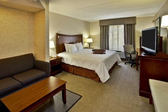 Hampton Inn & Suites Richmond/Virginia Center: I King Sofa bed