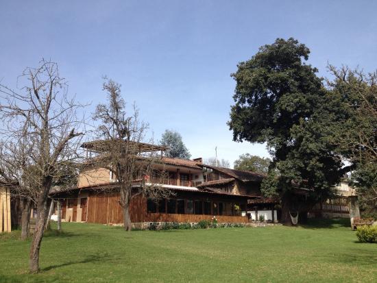 Xic Xanac: Vista desde su jardín