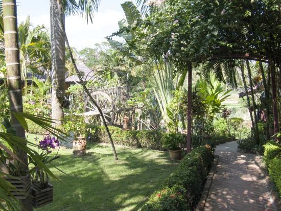 garten picture of thongbay guesthouse luang prabang tripadvisor rh tripadvisor ie