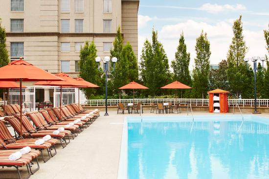 The 30 Best Atlanta Ga Family Hotels Amp Kid Friendly