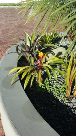 Termales el Otono: Planter at lobby front entrance