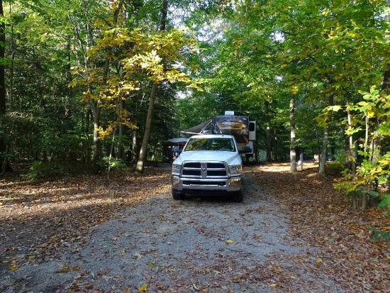 Pohick Bay Regional Park Campgrounds : Campsite
