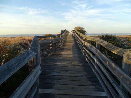 First Landing State Park Walkway To Beach