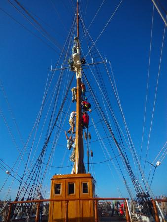 1877 Tall Ship ELISSA: The ELISSA Ship