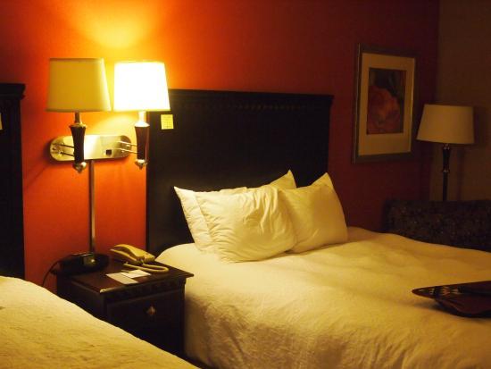 Hampton Inn Asheville - I-26 Biltmore Area: Room