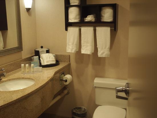 Hampton Inn Asheville - I-26 Biltmore Area: Bathroom