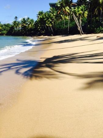 Hyatt Residence Club Dorado, Hacienda del Mar : idyllic beach.