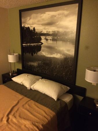 Super 8 Buffalo : Great service and the rooms are clean and comfortable