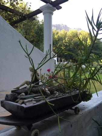 ริเวอร์ไซด์เอสเตท: Creative Garden