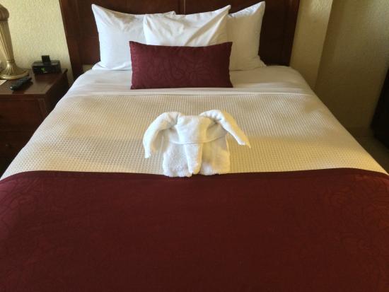 Plaza Resort & Spa: Towel Animal
