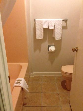 Baymont Inn & Suites Bellingham: Very clean, heat lamp above with strong fan and timer dial.