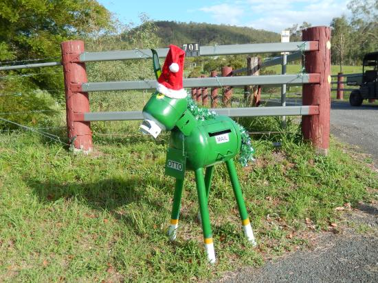 Destiny Boonah Eco Cottages and Donkey Farm : Otto the mailbox