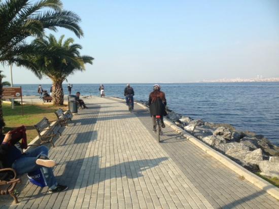 The Biker Istanbul: Bike Princes Island
