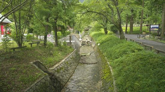 Miwakare Park