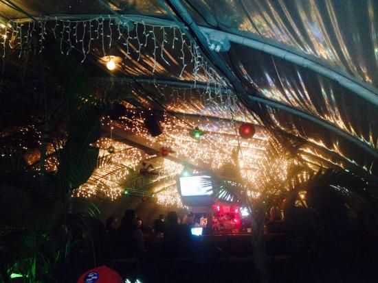 Photo of Nightclub Greenhouse Bar at 2211 Bandywood Dr, Nashville, TN 37215, United States