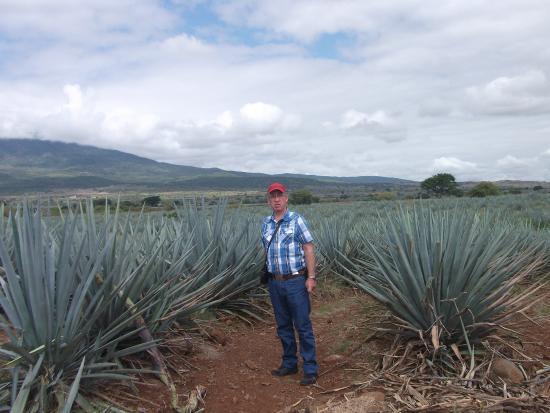 Tequila Tours: un dia todo esto sera suyo m`hijo :) y la cheyene  ?apá