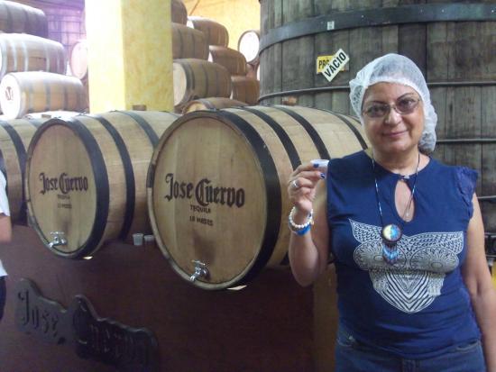 Tequila Tours: salud la reina