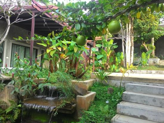 At Nata Chiangmai Chic Jungle: Outside the room
