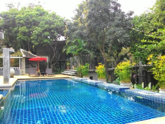 At Nata Chiangmai Chic Jungle: Swimming Pool