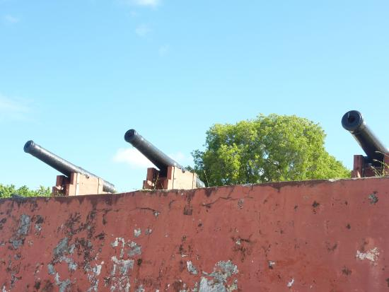 Fort Frederik: Cannons