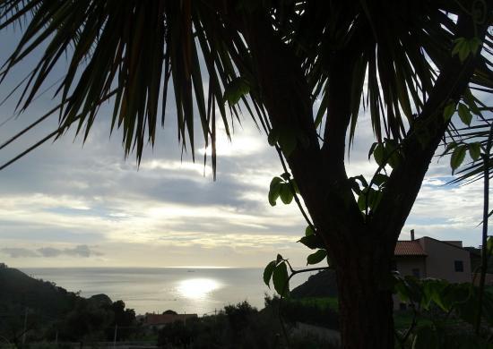 Pianta grassa foto di finestra sul mare castelmola tripadvisor - La finestra sul mare taormina ...
