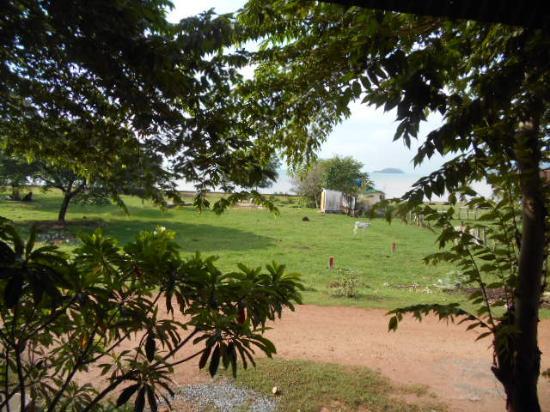Kepmandou Lounge-Bar: view  from the balcony