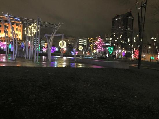 View Of The Christmas Lights At Midnight Picture