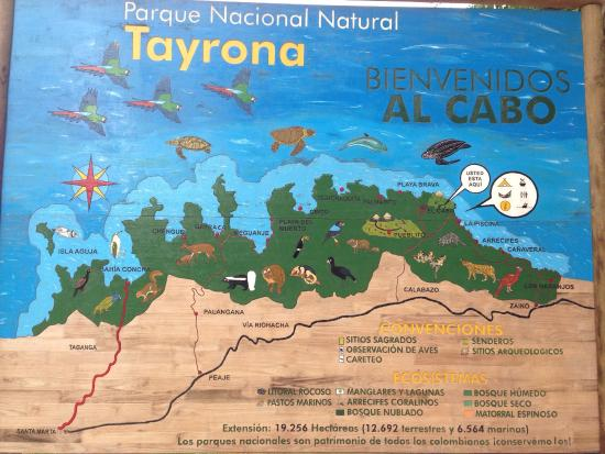 Casa de Leda - a Kali Hotel : Tracks through Tayrona