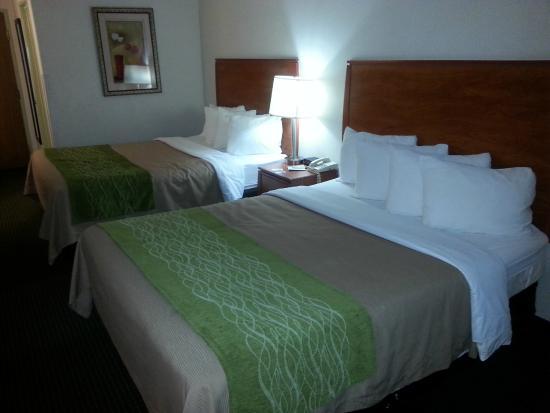 Quality Inn Denver Westminster: Room