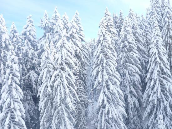 Chalet Almandine: Snow