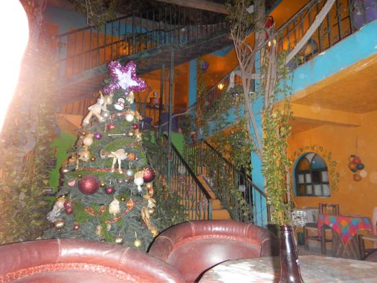 Cabo Inn Hotel: Communal area Christmas tree