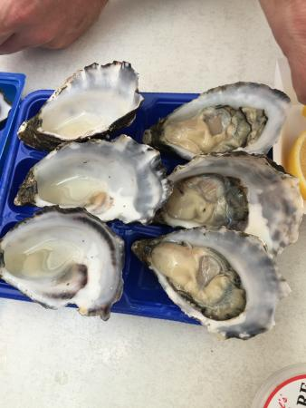 Fish Market Cafe: Fresh Oysters