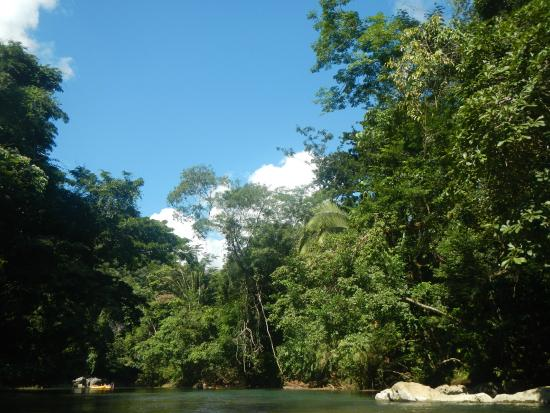 Cave Tubing R Us: Along the river