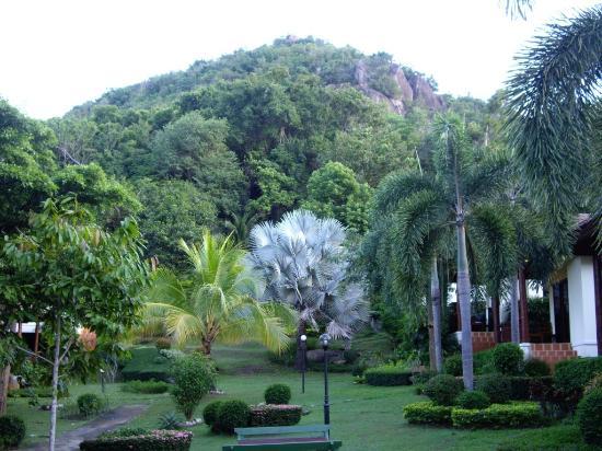 La Mer Samui Resort : От дороги вид на территорию отеля