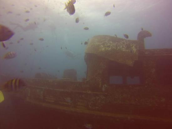 Vip Divers: Затопленный корабль, глубина 12 метров
